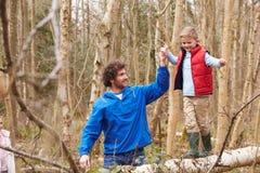 父亲和儿子步行的在森林地 免版税库存图片