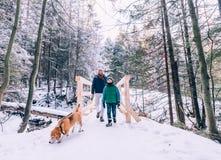 父亲和儿子走与狗在雪森林里 库存照片