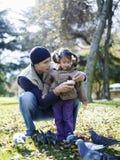 父亲和女儿哺养的鸽子 库存图片