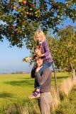 父亲和女儿采摘苹果秋天或秋天 免版税图库摄影