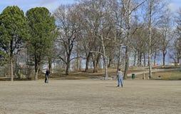 父亲和他的儿子在公园演奏飞碟 图库摄影