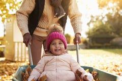 父亲在秋天庭院给在独轮车的女儿乘驾 库存照片