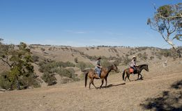 年轻父亲当青少年女儿的马辅导员乘坐小的小马佩带的女牛仔帽子的 库存图片
