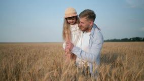 父母儿童关系,年轻爸爸用手走与微笑的女儿和幻灯片麦子小尖峰和峰顶  影视素材