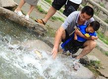 爸爸和他的儿子喂养鱼 图库摄影