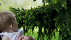 爸爸拿着她的胳膊的一个女儿 树的女儿伸手可及的距离 股票录像