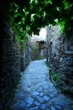 片岩小的典型的山村  库存照片