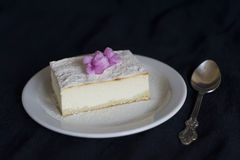 片式乳酪蛋糕 库存图片