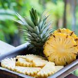 片断和一半菠萝宏指令,在水多热带夏天的背景,成熟菠萝黏浆状物质,热带,异乎寻常的果子 免版税库存图片