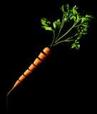 从片断和叶子收集的橙色红萝卜 黑色背景 侧视图 免版税图库摄影
