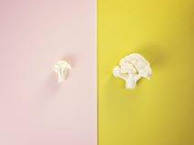 片断新鲜花椰菜的菜 时刻收割收获 图库摄影