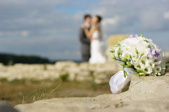 片段婚礼 库存图片