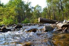 片段运行小的石头的山河 库存照片