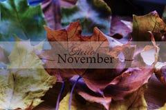 8片秋天背景eps文件包括的叶子 秋天背景特写镜头上色常春藤叶子橙红 免版税图库摄影