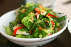牌照沙拉小的蔬菜 免版税库存照片