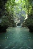 牙买加河 免版税图库摄影