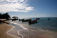 牙买加海岸 库存照片