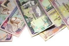 牙买加的货币 库存照片