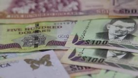 牙买加货币-银行业务和经济稳定概念 股票录像