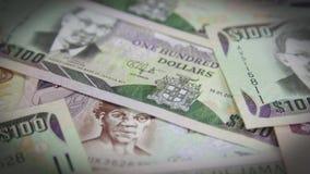 牙买加货币-银行业务和经济稳定概念 影视素材