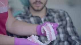 牙医显示下颌嘲笑给坐的患者在一个现代牙齿办公室的椅子 技巧医生提供假牙 影视素材