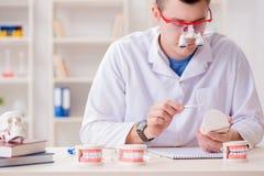牙医运转的牙植入管在医学实验室 免版税库存图片