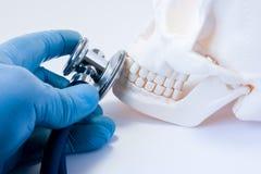 牙疾病的诊断和侦查在牙科,面孔,上部和下颌,口头和上颌面的s的骨头疾病方面  免版税库存图片