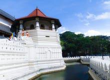牙的寺庙,康提, Sri 图库摄影