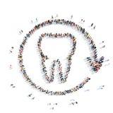 牙的theshape的,牙科人们 免版税库存照片