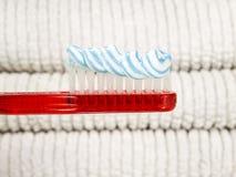 牙膏蠕虫 库存图片