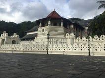 牙遗物斯里兰卡斯里Dalada Maligawa寺庙  库存图片