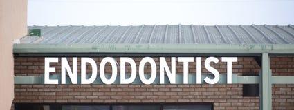 牙髓病学家 库存图片