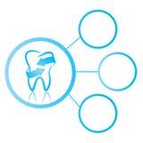 牙齿图表 库存图片