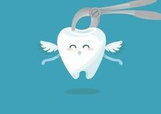 牙齿提取镊子和牙 库存图片