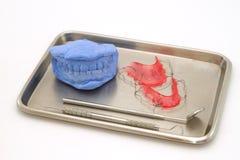 牙齿石膏模型和牙齿括号在医疗盘子 库存照片