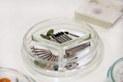 牙齿钻子burs 牙科设备,钻子,研磨剂,运河的牙齿bur,波兰bur,在培养皿玻璃的砂轮 库存图片