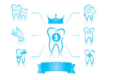 牙齿infographics 库存图片