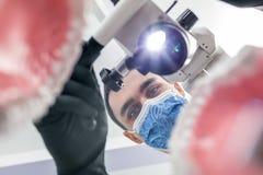 牙医通过下颌模型看 库存照片