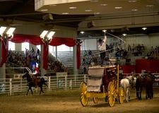 牛仔与旗子的乘驾马在孤立星惊逃展示 免版税库存照片