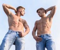 牛仔布裤子强调阳刚之气性别 人坚强的肌肉运动员爱好健美者 神的秀丽 性感的躯干 库存照片