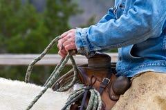 牛仔的现有量 免版税图库摄影