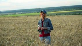 牛仔裤和盖帽的一名苗条妇女在麦田站立,微笑和拿着春黄菊花在一个晴朗的夏日 影视素材