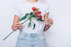 牛仔裤和T恤杉的妇女拿着一朵红色花 图库摄影