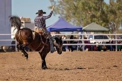 牛仔骑一匹顽抗的马 免版税库存图片