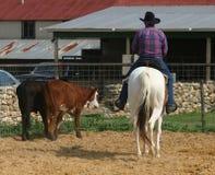牛仔 免版税图库摄影