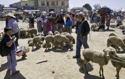 牛危地马拉市场 免版税库存照片