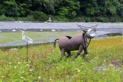 水牛和白色白鹭生产了被回收的材料 免版税库存图片