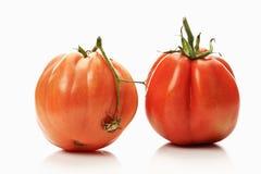 黄牛在白色背景的心脏蕃茄 免版税库存图片