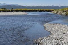 水牛城叉子在北杰克逊Hole平原的河道  免版税图库摄影