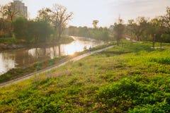 水牛城日落的多沼泽的支流公园在春天 图库摄影